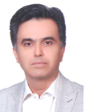 مجید منصور گرکانی - مدیرعامل